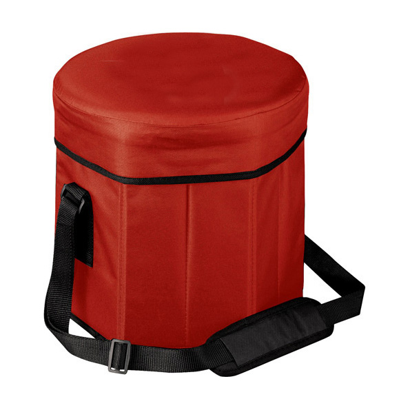 Insulated Picnic Chair Bag