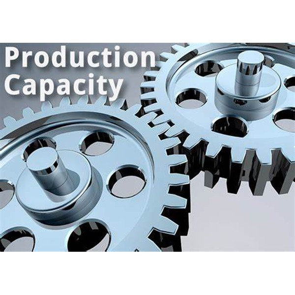 Daysun Production Capacity