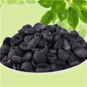 Shell Activated Carbon