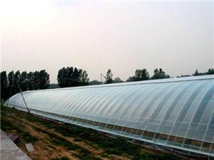High quality Anti-drip Agricultural Films Quotes,China Anti-drip Agricultural Films Factory,Anti-drip Agricultural Films Purchasing