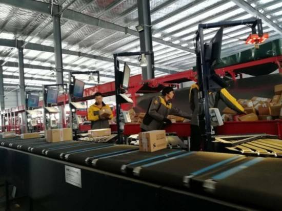 automated sorting systems