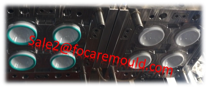 double color plastic mould