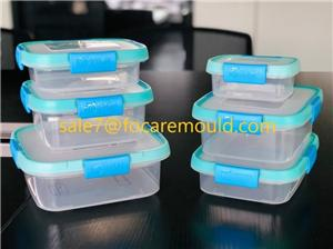 Double Color Lid of Airtight Lock Box Plastic Injection Mould