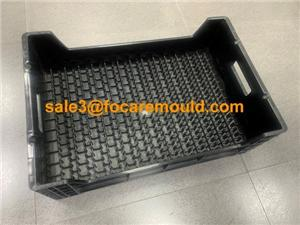 Plastic Flower Transportation Crate Injection Mould