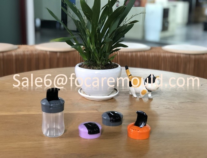 High quality Plastic Salt Shaker Cap Injection Mould Quotes,China Plastic Salt Shaker Cap Injection Mould Factory,Plastic Salt Shaker Cap Injection Mould Purchasing