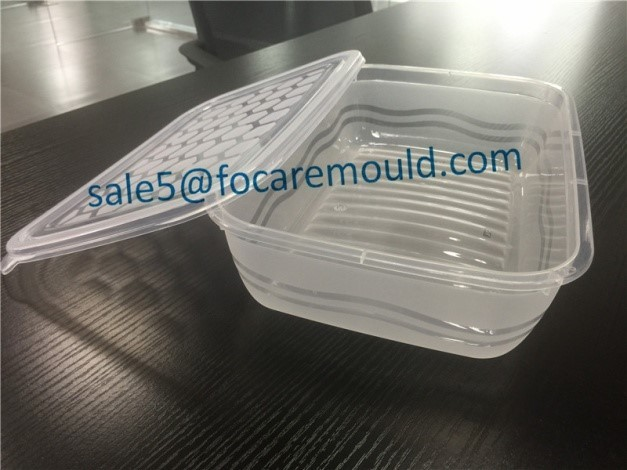 High quality 29.5x20x7mm Thin-Wall Container Mould Quotes,China 29.5x20x7mm Thin-Wall Container Mould Factory,29.5x20x7mm Thin-Wall Container Mould Purchasing