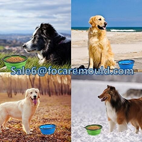 High quality Portable & Collapsible Pet Food & Water Bowl Double Color Plastic Injection mould Quotes,China Portable & Collapsible Pet Food & Water Bowl Double Color Plastic Injection mould Factory,Portable & Collapsible Pet Food & Water Bowl Double Color Plastic Injection mould Purchasing