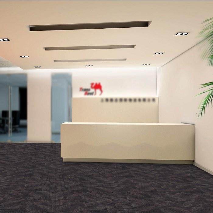 Nylon Beautiful Auditorium Jacquard Modular Carpet