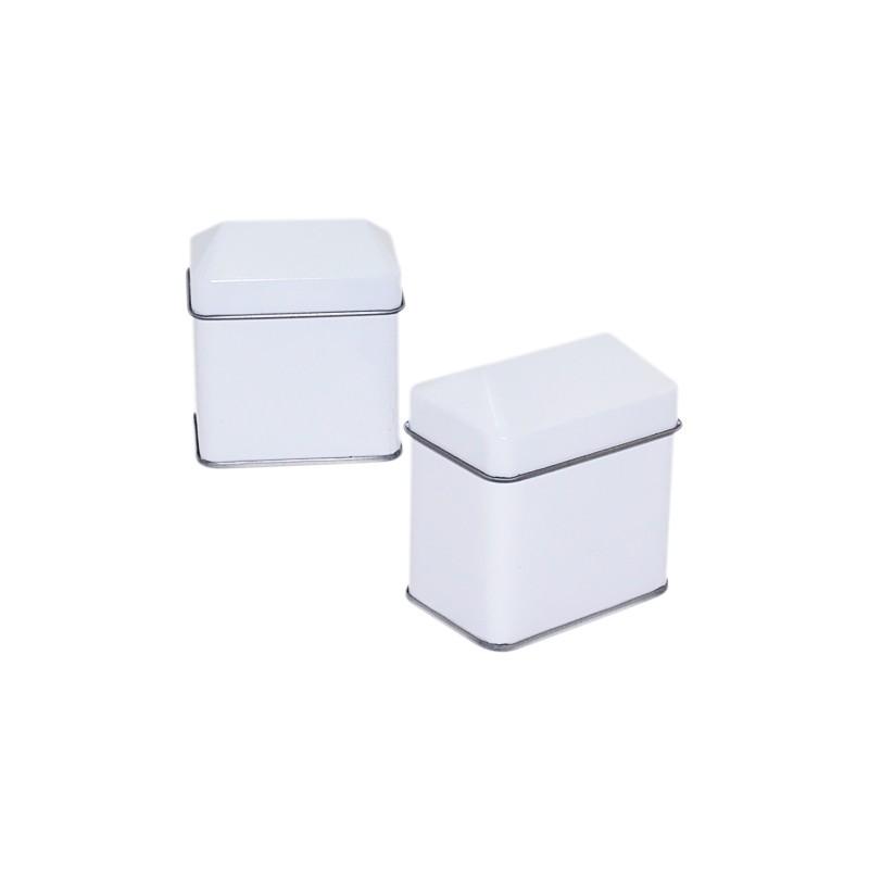 House Shaped Tin Box
