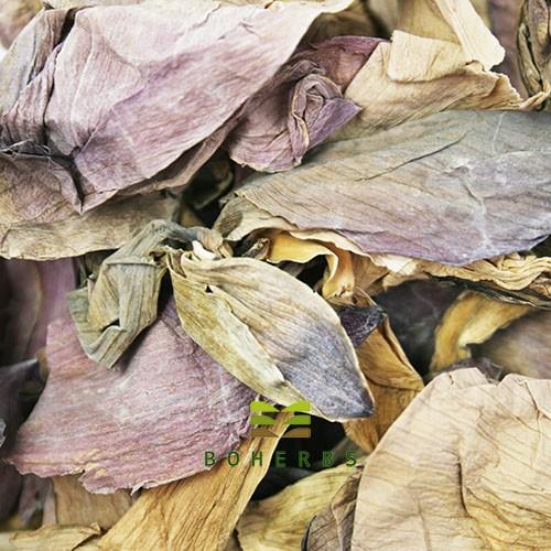 Dried Lotus Flower