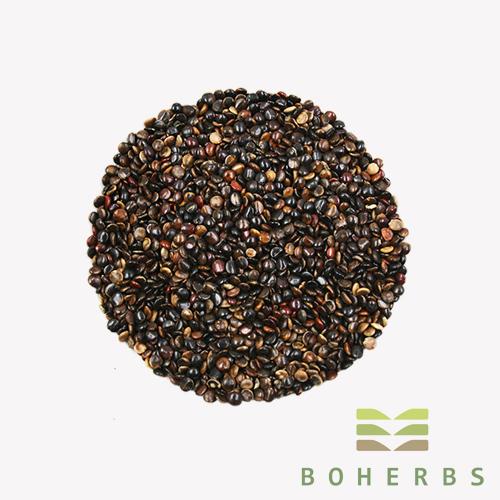 Chinese Herbal Medicine Hovenia Dulis