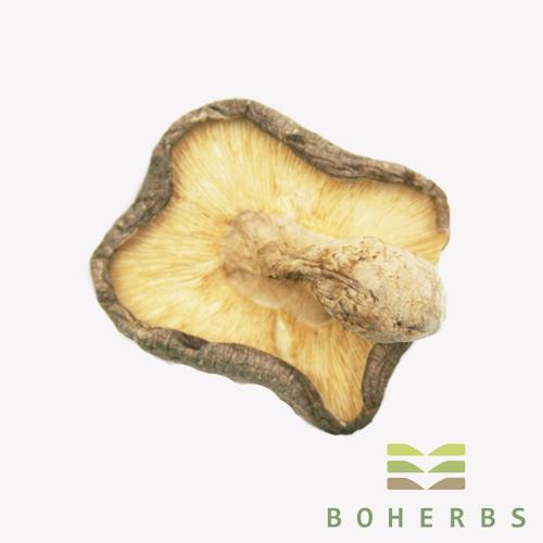 Shiitake Mushroom Dried
