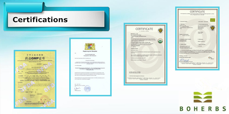 Siberian Ginseng Powder Pure Organic Certified