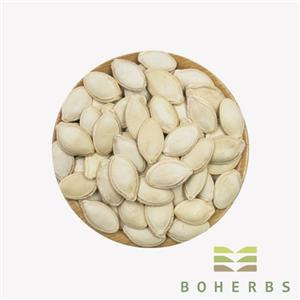Dried Raw Pumpkin Seed