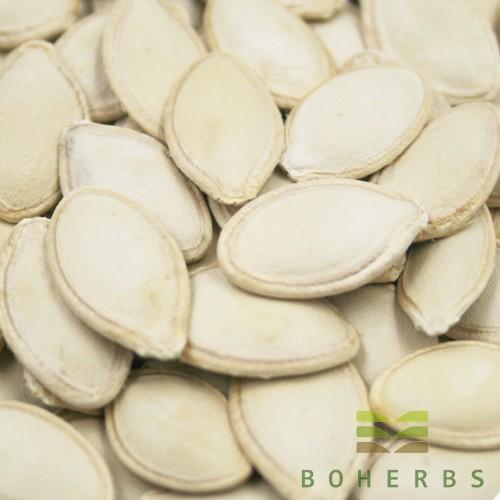 Dried Raw Pumpkin Seed Manufacturers, Dried Raw Pumpkin Seed Factory, Supply Dried Raw Pumpkin Seed