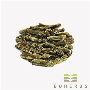 Dried Sophora Japonica Seeds