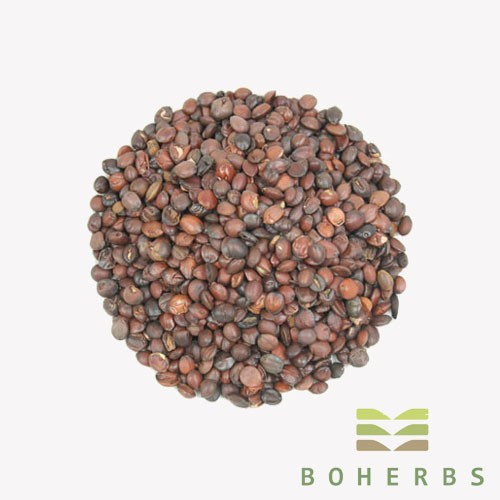 Sour Jujube Seed Certified Organic