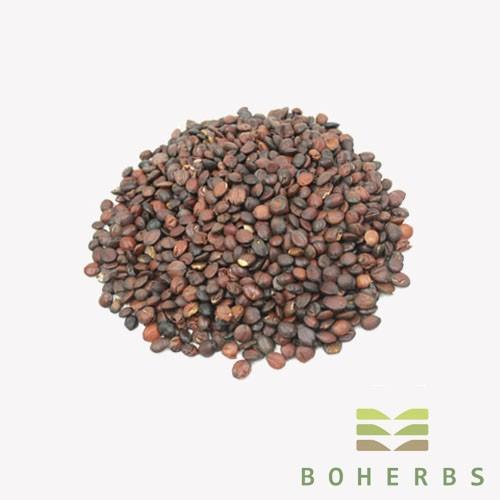 Sour Jujube Seed Certified Organic Manufacturers, Sour Jujube Seed Certified Organic Factory, Supply Sour Jujube Seed Certified Organic