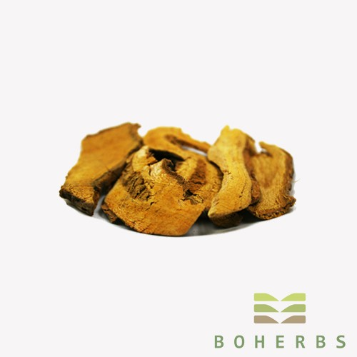 Knotweed Root Certified Organic Manufacturers, Knotweed Root Certified Organic Factory, Supply Knotweed Root Certified Organic