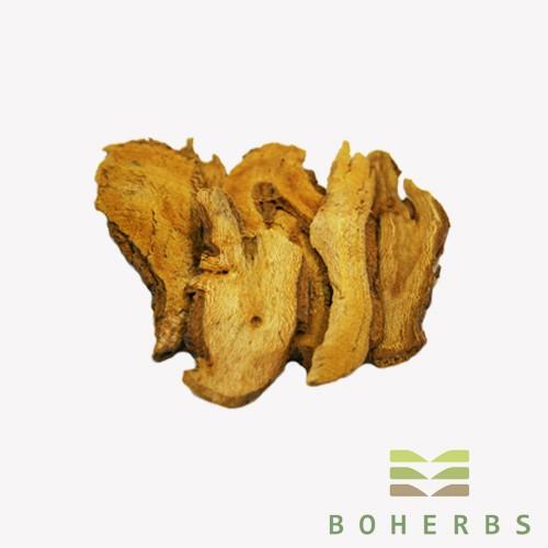 Knotweed Root Certified Organic