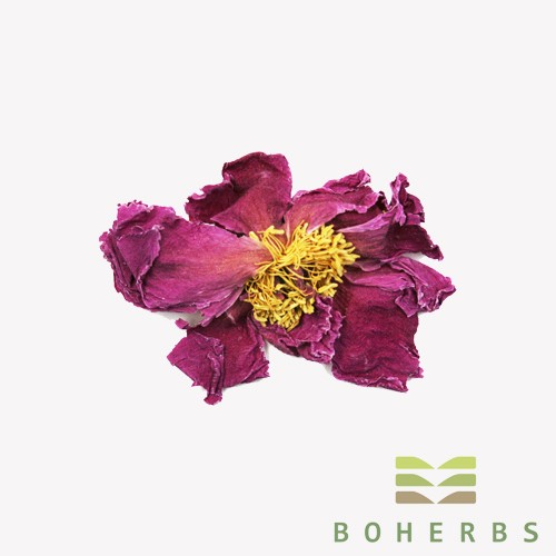 Dried Poeny Flower Tea Manufacturers, Dried Poeny Flower Tea Factory, Supply Dried Poeny Flower Tea