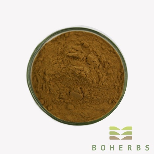 Mulberry Leaf Extract Powder Manufacturers, Mulberry Leaf Extract Powder Factory, Supply Mulberry Leaf Extract Powder