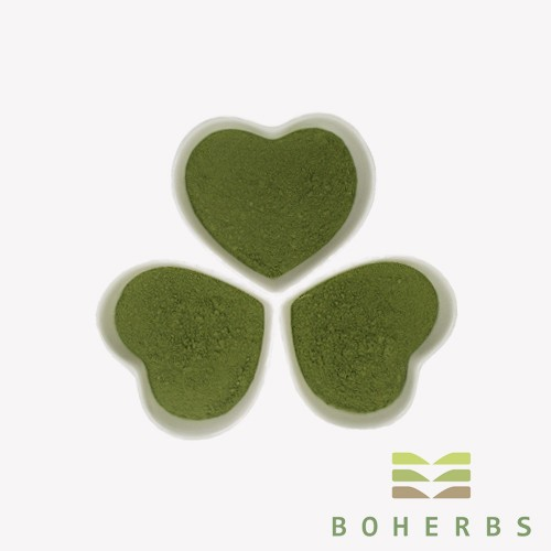 Barely Grass Powder Manufacturers, Barely Grass Powder Factory, Supply Barely Grass Powder