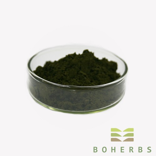 Chlorella Powder Manufacturers, Chlorella Powder Factory, Supply Chlorella Powder
