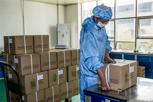 Chinese Medicine 10% Ginsenoside Ginseng Root Extract Powder