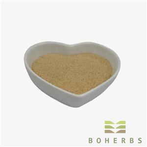 Panax Ginseng Root Extract Powder