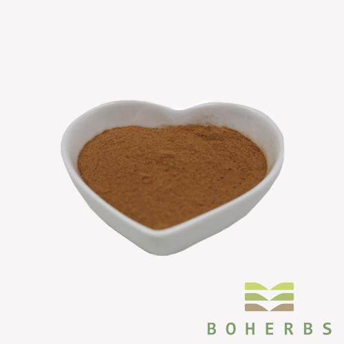 Schisandra Chinesis Extract Powder