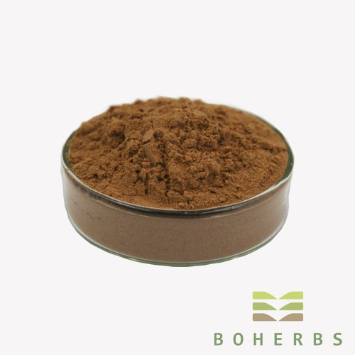 Schisandra Chinensis Berry Extract Powder