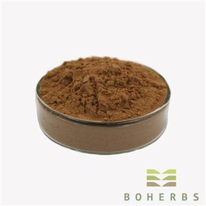 Schisandra Chinensis Berry Extract Powder