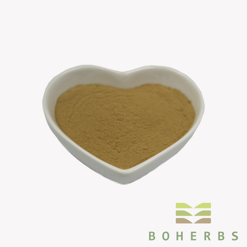 Anti-cancer Gynostemma Pentaphyllum Leaf Extract Powder