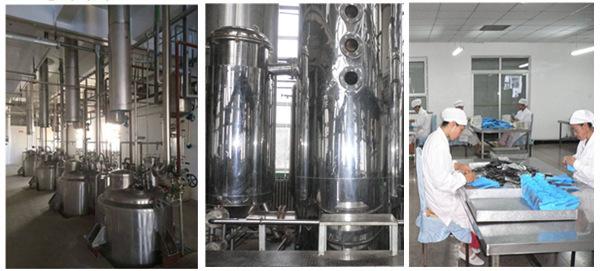 Water Soluble Gingo Biloba Extract Powder