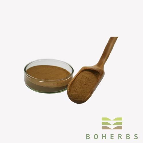Ginkgo Biloba Leaf Extract Powder Manufacturers, Ginkgo Biloba Leaf Extract Powder Factory, Supply Ginkgo Biloba Leaf Extract Powder