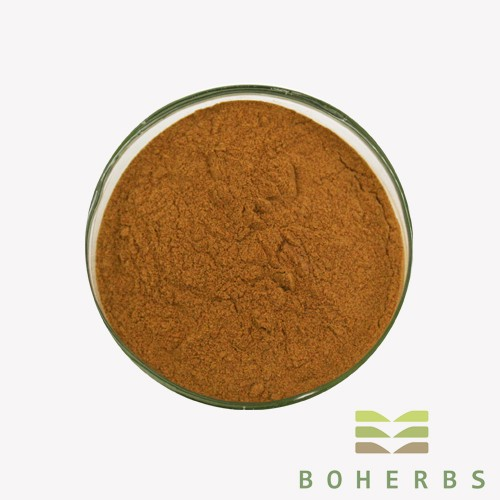 Astragalus Root Extract Powder Manufacturers, Astragalus Root Extract Powder Factory, Supply Astragalus Root Extract Powder