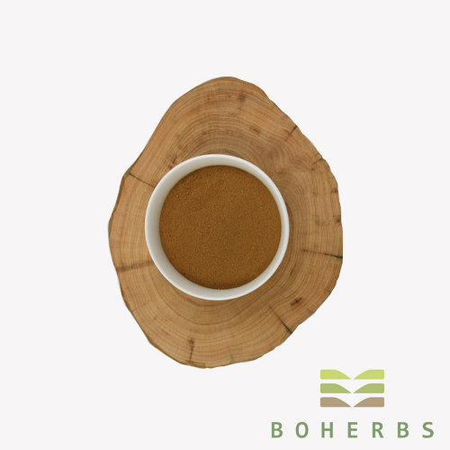 100% Pure Organic Astragalus Root Extract Powder