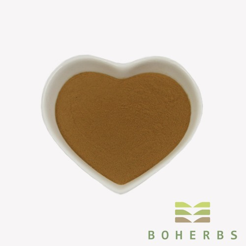 American Ginseng Extract Powder Manufacturers, American Ginseng Extract Powder Factory, Supply American Ginseng Extract Powder