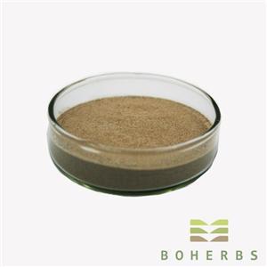Gotu Kola Extract Powder