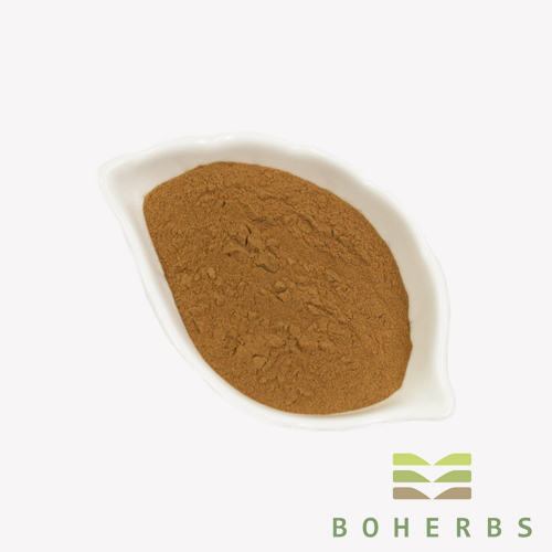 100% Pure Mulberry Fruit Extract Powder