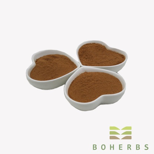 Hawthorn Berry Extract Powder Manufacturers, Hawthorn Berry Extract Powder Factory, Supply Hawthorn Berry Extract Powder