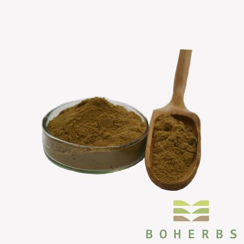 Reishi Mushroom Extract Powder Manufacturers, Reishi Mushroom Extract Powder Factory, Supply Reishi Mushroom Extract Powder