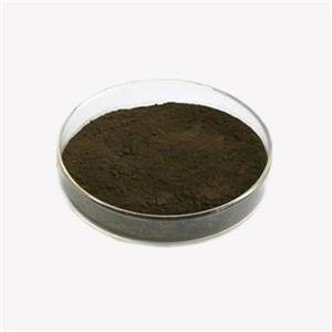 St.John's Wort Extract Powder