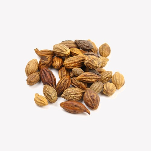 Dried Terminalia Chebula Fruit Manufacturers, Dried Terminalia Chebula Fruit Factory, Supply Dried Terminalia Chebula Fruit