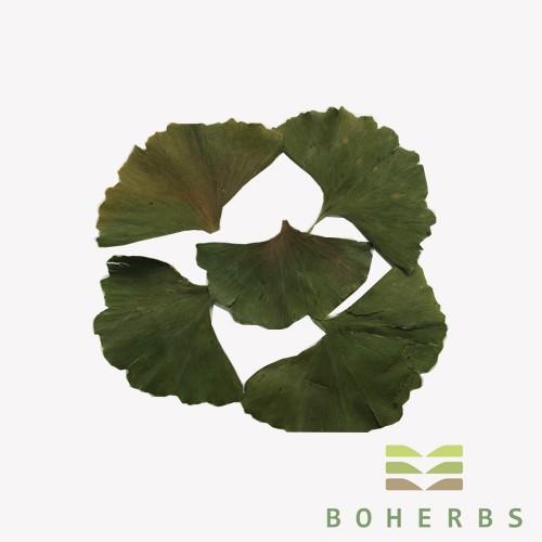 Ginkgo Biloba Leaf Dried Certified Organic