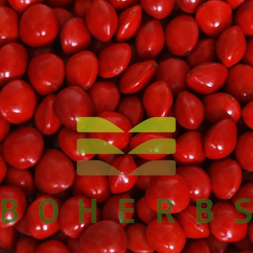 Dried Red Bead Tree Red Lucky Seed Manufacturers, Dried Red Bead Tree Red Lucky Seed Factory, Supply Dried Red Bead Tree Red Lucky Seed