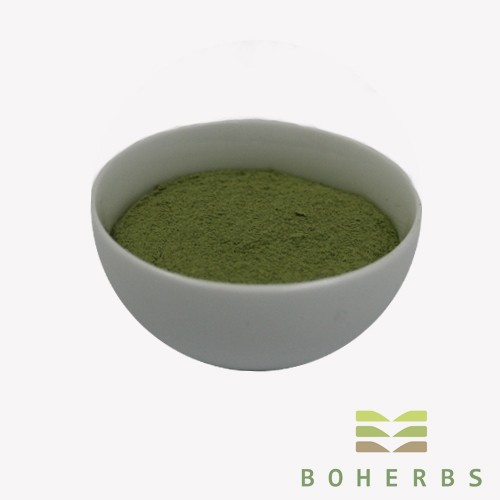 Alfalfa Grass Powder