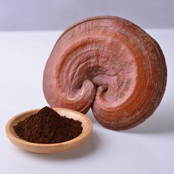 Ganoderma Lucidum Powder