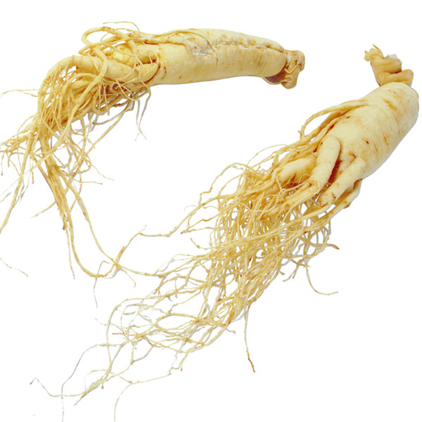 Dried Ginseng Whole Root